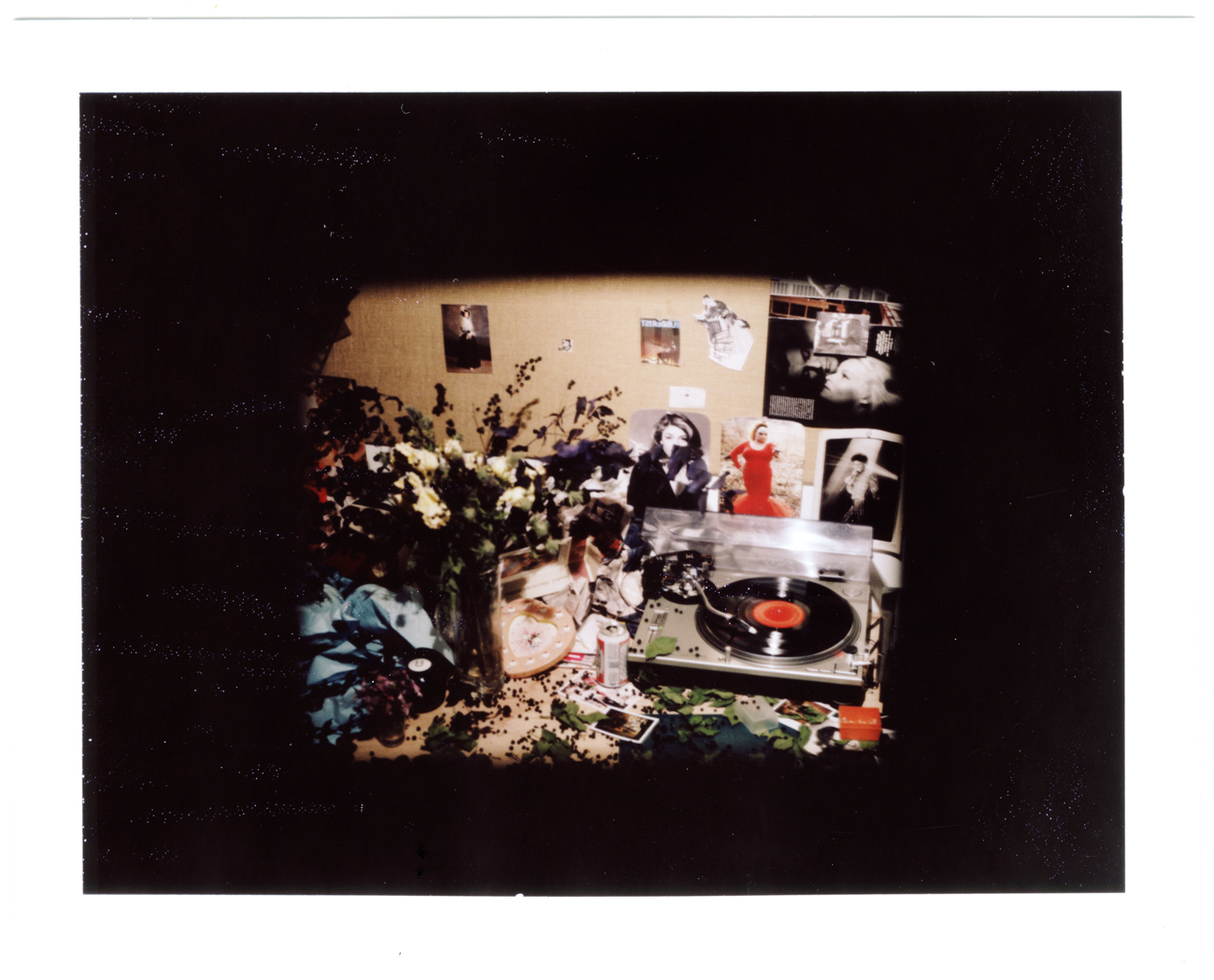 638_polaroid-still-life-01copy